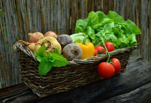 Alimentació Natural